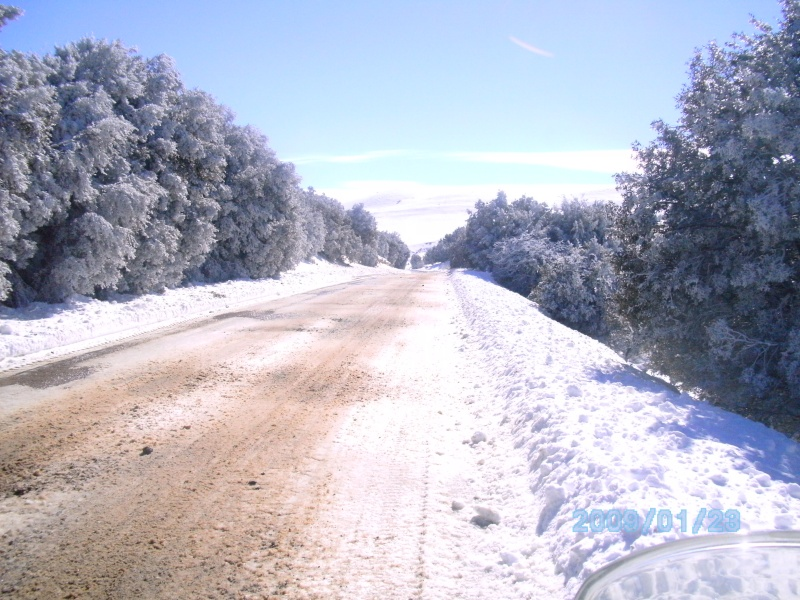 """7 et 8 janvier 2012 hivernale """"les marmottes"""" - Page 5 Bild0510"""