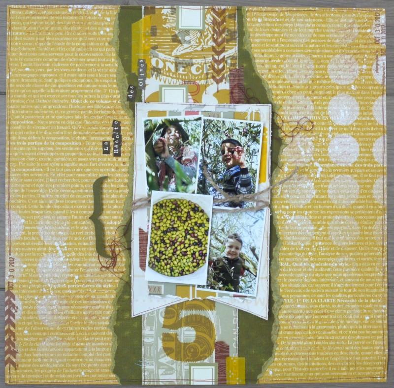 8 nov : La récolte des olives P1260314