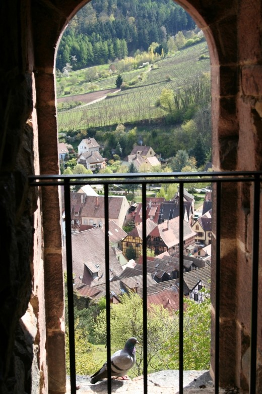Pâques en Alsace à Riquewihr Kayser13