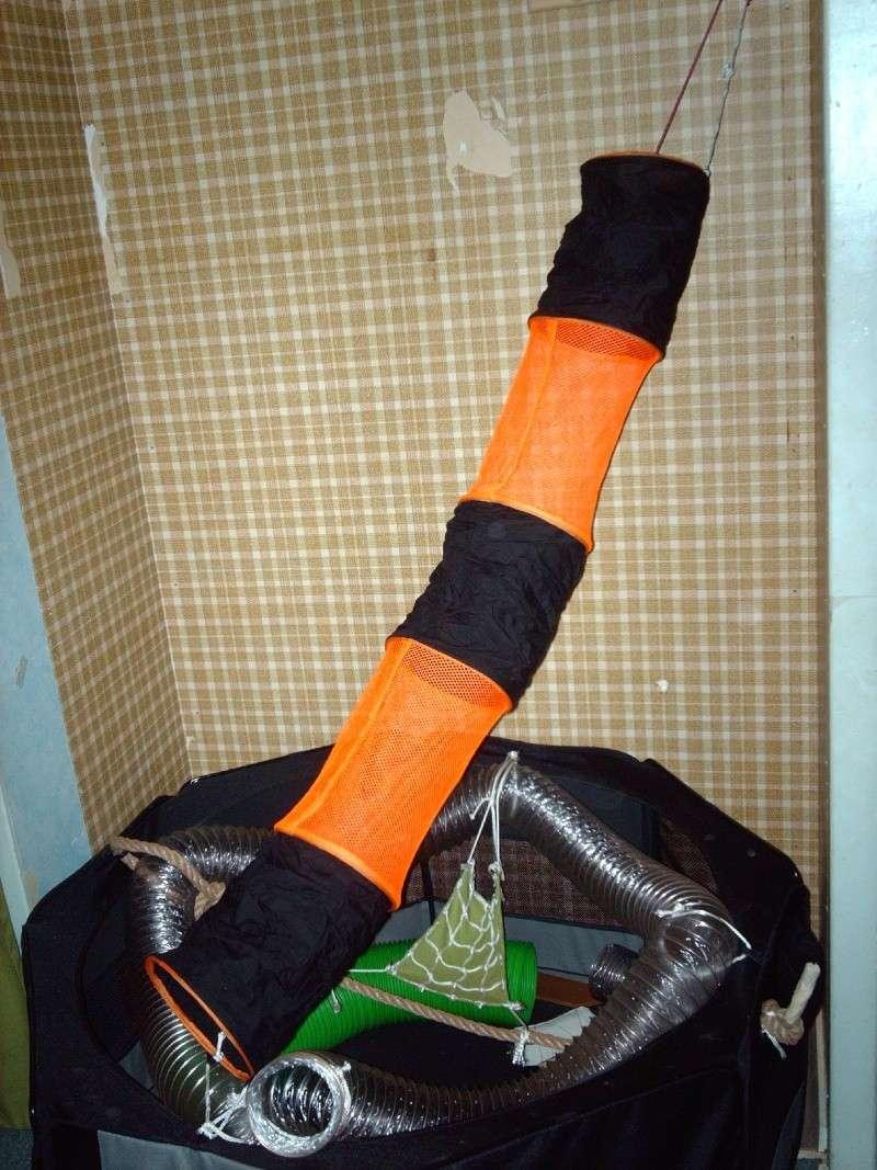 Enclos en nylon reconverti en aire de jeu ( photos ) - Page 5 Imag0910