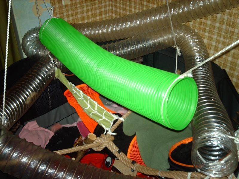 Enclos en nylon reconverti en aire de jeu ( photos ) - Page 5 Imag0914