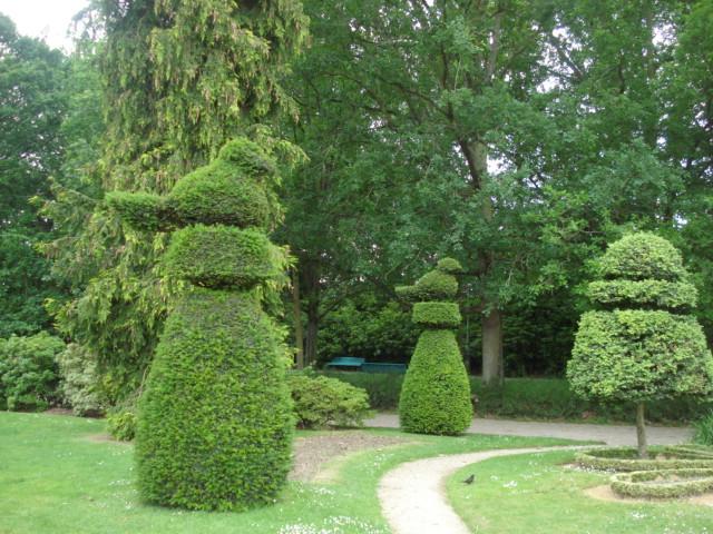 Jardin merveilleux E110