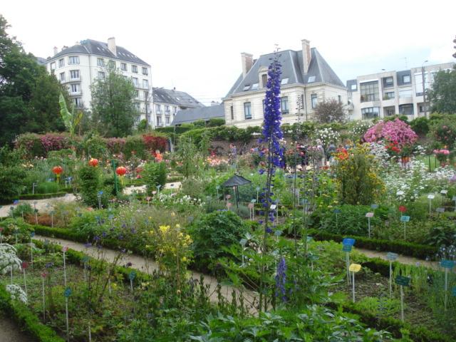 Jardin merveilleux E210