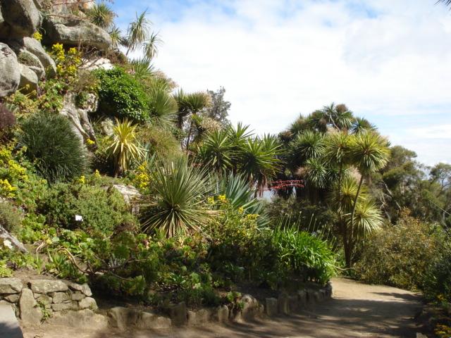 Jardin merveilleux F210