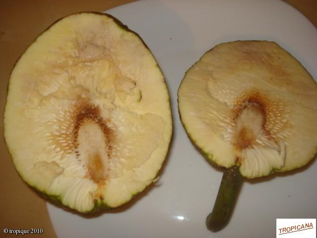 Hướng dẫn gửi (post) bài viết Fruit_10