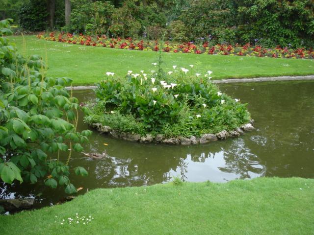 Jardin merveilleux Vue_a11