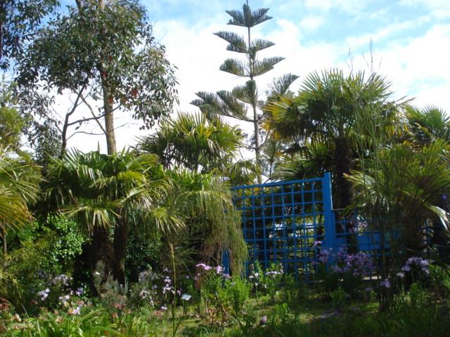 Jardin merveilleux Vue_c10