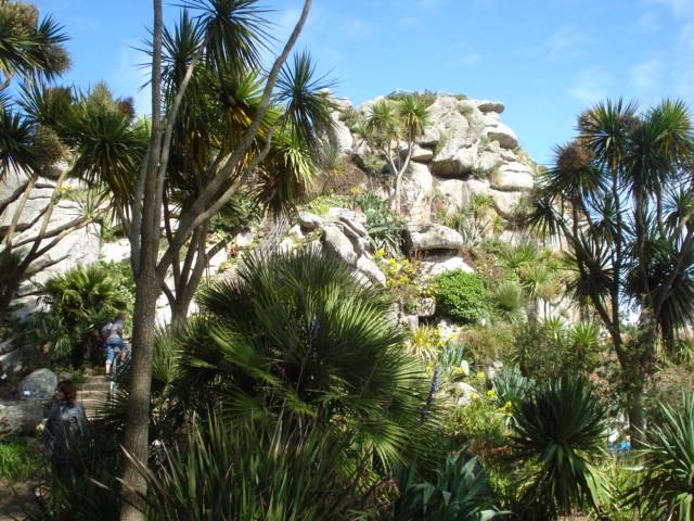 Jardin merveilleux Vue_d11