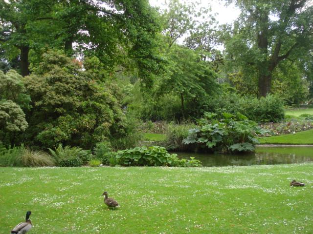 Jardin merveilleux Vue_e10