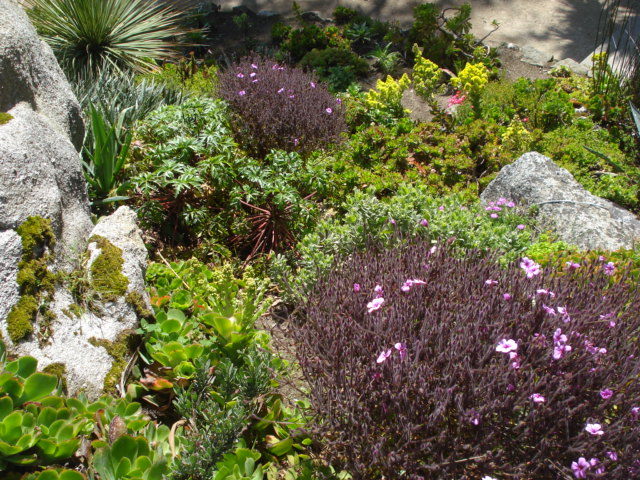Jardin merveilleux Vue_e11