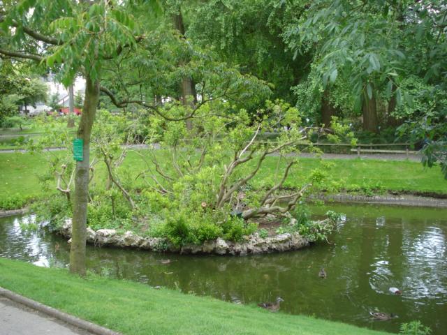 Jardin merveilleux Vue_f10