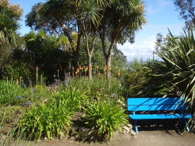 Jardin merveilleux Vue_i10
