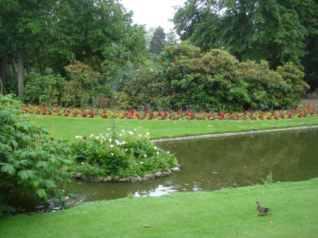Jardin merveilleux Vue_k10