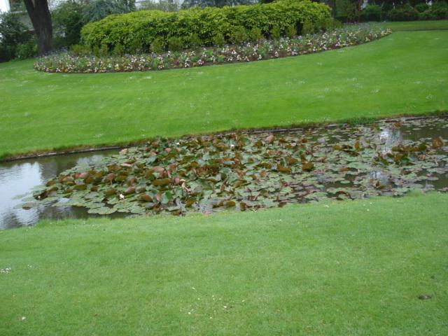 Jardin merveilleux Vuej10