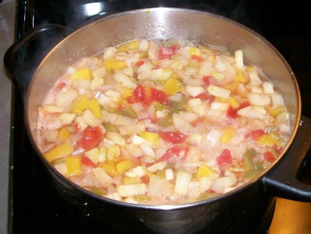 Ketchup aux fruits en canne Photo_26