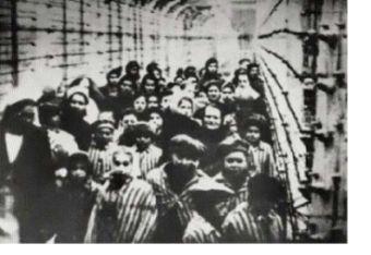 Compilation de Messages du Ciel se rapportant aux camps d'exterminations américains ! Auschw10