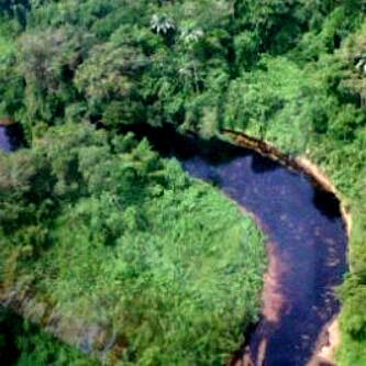 Plus grande catastrophe d'eau douce : une marée noire souille le Guarapiche au Venezuela Guarap10