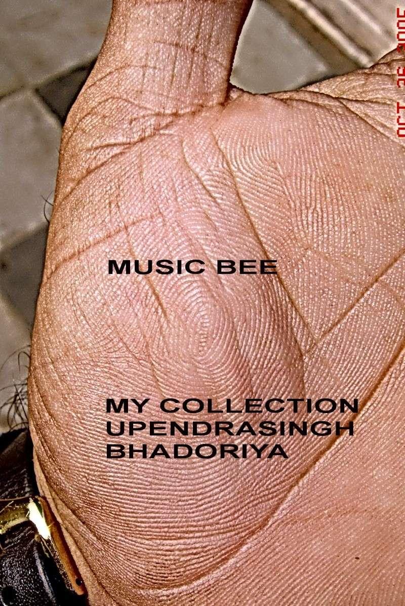 """""""MUSIC BEE""""  Dsc07310"""