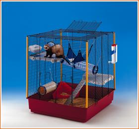 [Recherche] Cage démontable pour 5/6 rats pour cage de vacances [35] Furet_10