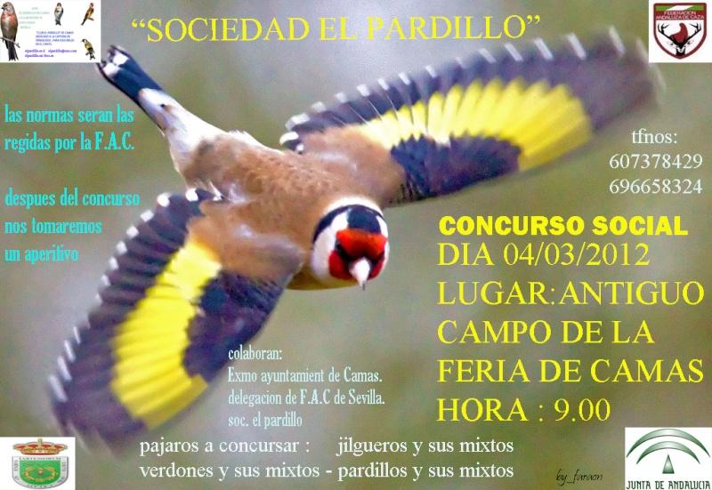 CONCURSOS SOCIALES EN SEVILLA EN 2012 Pajari10