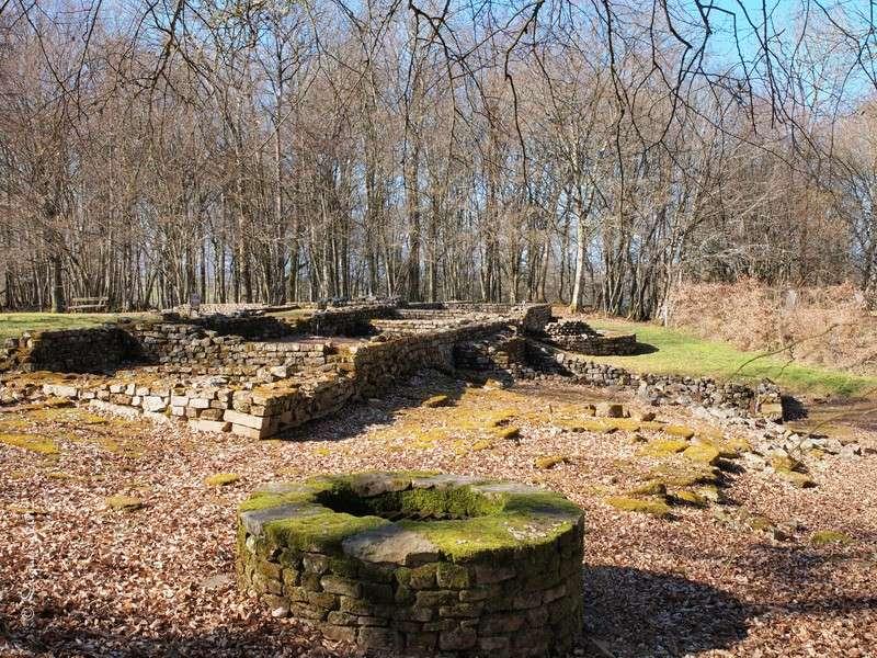Compierre : Site Gallo-Romain Forum111