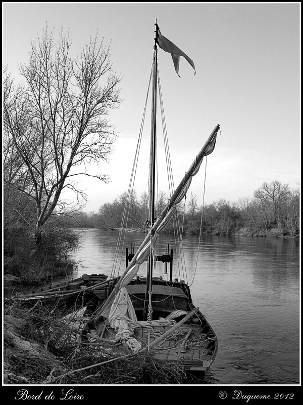 Bord de Loire .... P1170617
