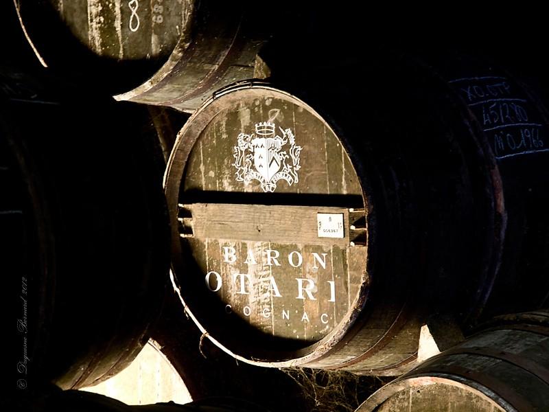Cognac* : les caves P5182610