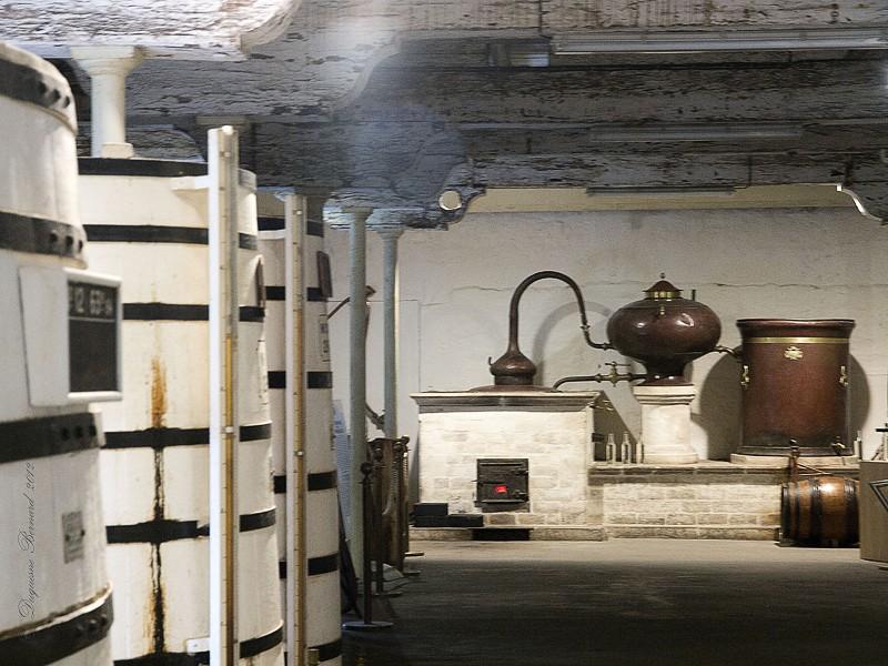 Cognac* : les caves P5182611