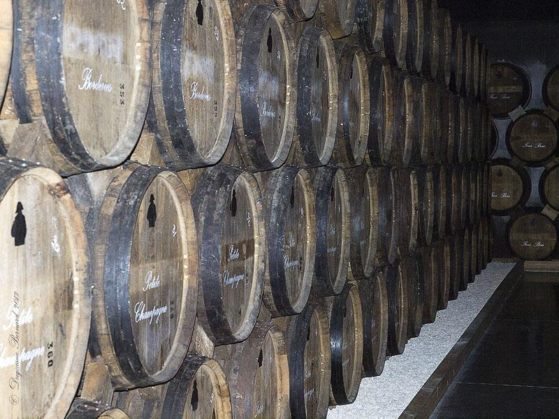 Cognac* : les caves P5182710