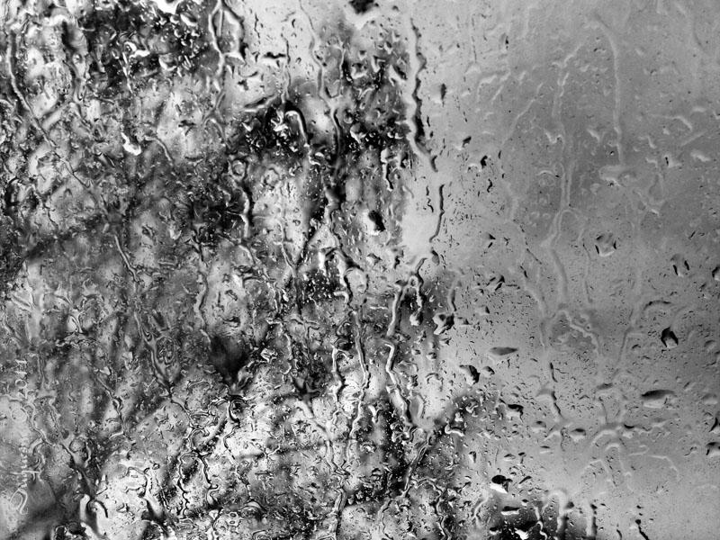 La pluie, l'hiver sur les carreaux ..... Pc160210