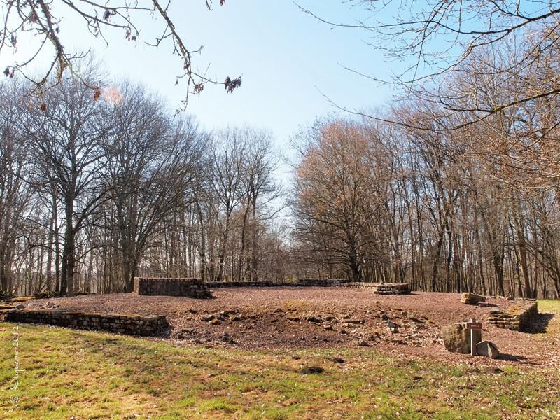 Compierre : Site Gallo-Romain Temple10