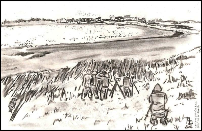 Wetlands 2012 : Petite mer de Gâvres (petit compte-rendu) Dessin10