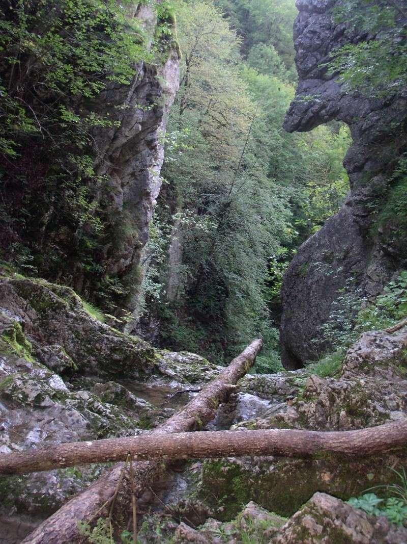 THEME DE DECEMBRE 2012 : les ponts! (3 photos autorisées) - Page 3 Vue_du12