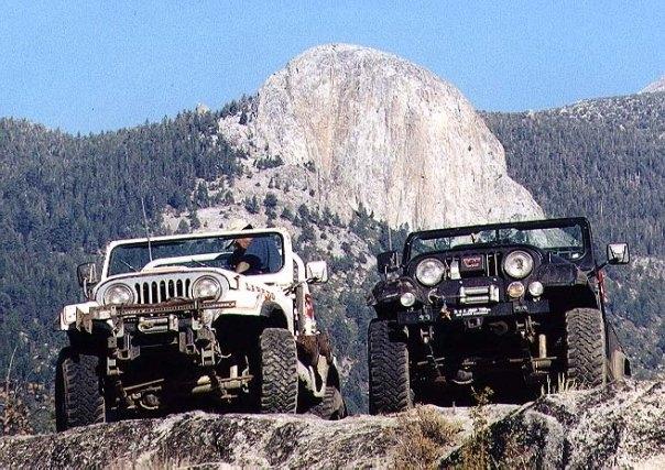 Quanto Jeep è questo... 25999310