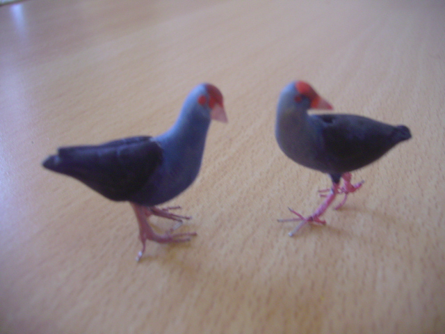 My new swamphens by Phil(ter) Img_4918