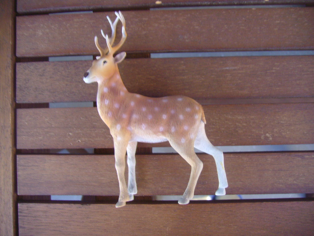 my Sol90 deer Img_6745