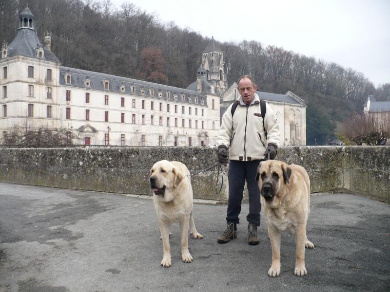 Du Morbihan à l'Ile d'Oléron, via la Dordogne... P1090212