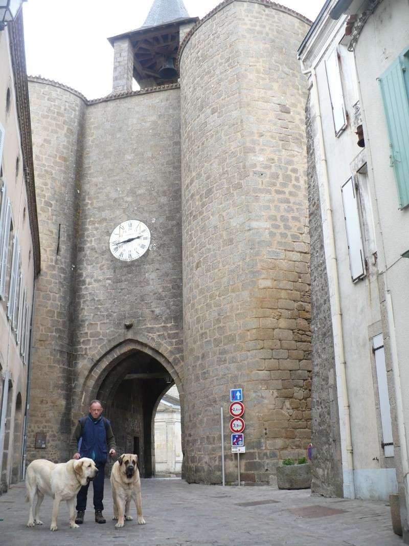 Virée en Limousin.... P1090810