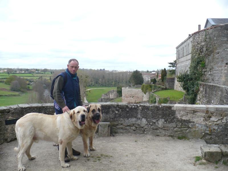 Virée en Limousin.... P1090811