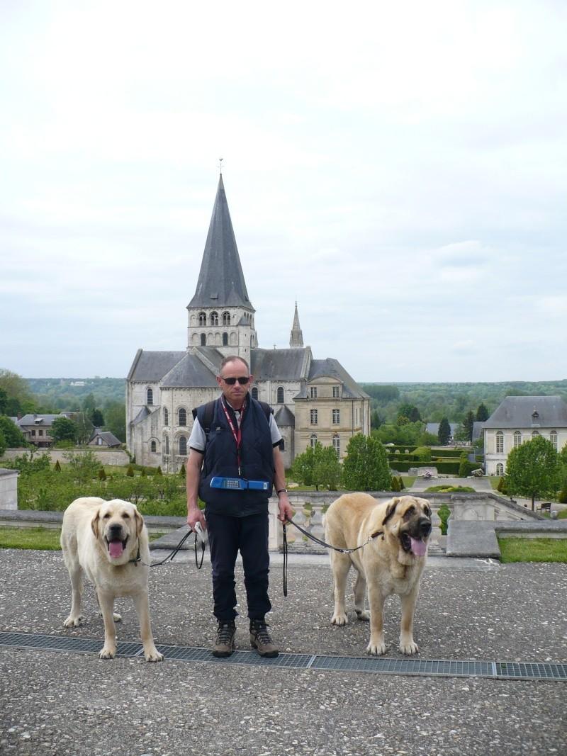 Goran et Fakir en Normandie P1100112