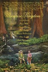 Le cinéma de Wes Anderson : La famille Tennenbaum, Moonrise Kingdom etc... Affich10