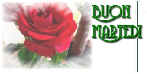 MARTEDI 17 LUGLIO 54082410