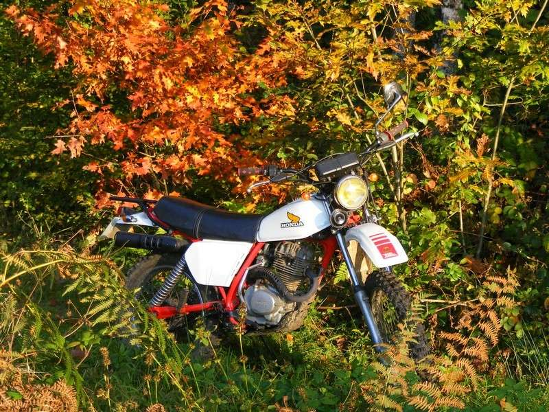 """concours photo oct 2011"""", Votre Honda en automne."""" Xls_0010"""