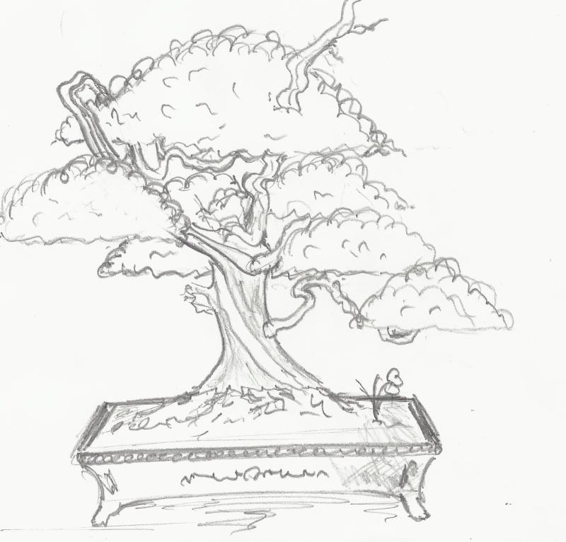 Gros Gros Juniperus Scan0011