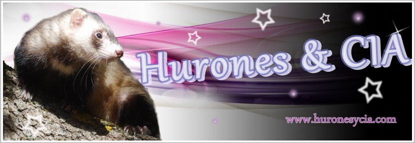 Foro Hurones & CIA Banner11