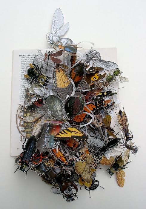 [Art] Livres objets-Livres d'artistes - Page 5 Insect11