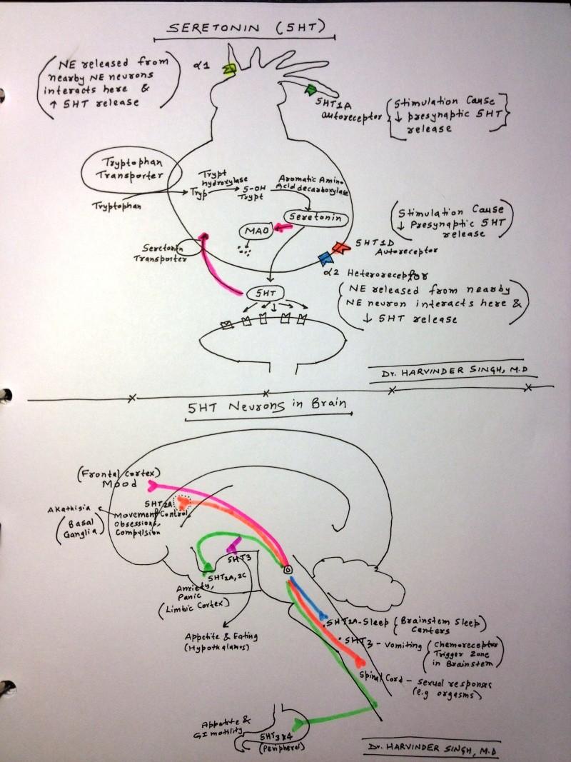 Schizophrenia- In Depth Explanation & Discussion Img_0112