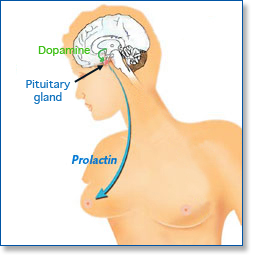 Which Antipsychotic is Most Likely to cause Decreased Prolactin? Prolac10