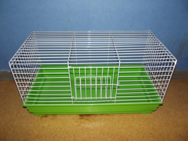 Petite cage et sac de transport ( 67 )  Dscf1411