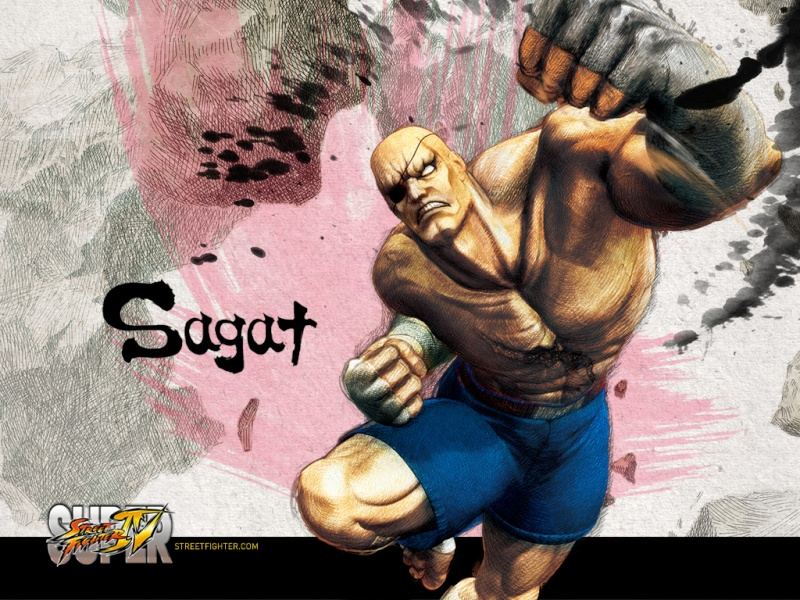 The Catalyst history with Street Fighter ! Sagat10